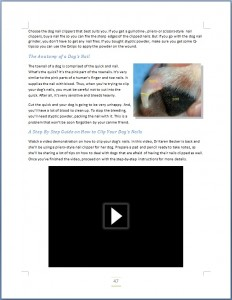 How to Groom a Dog Ebook