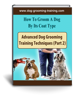 dog grooming training