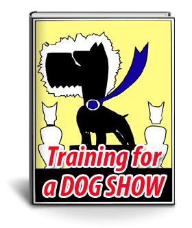 training for a dog show | dog grooming training