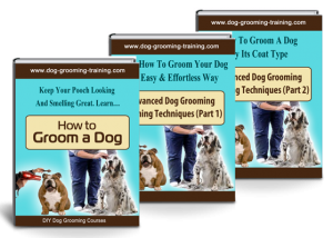 dog grooming training ebooks