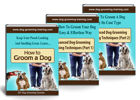 How To Groom a dog eBooks