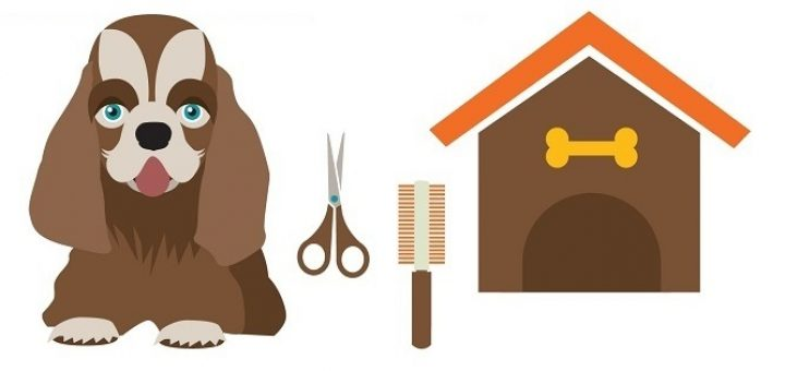 How To Groom A Dog With Scissors at Home in 12 Simple Steps