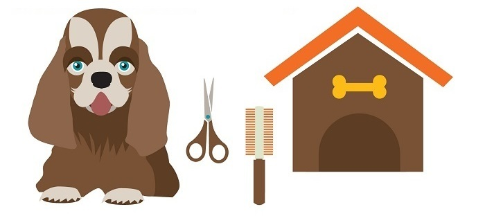 How to groom a dog with scissors at home in 12 simple steps solutioingenieria Gallery