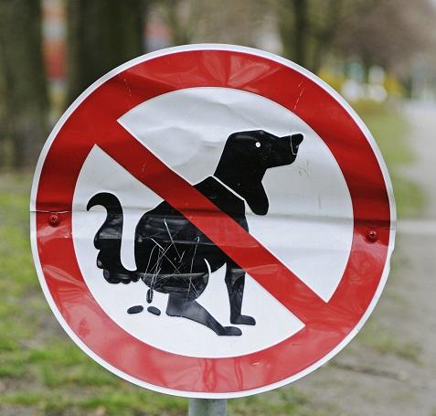 o-TOWN-MAILS-DOG-POOP-facebook