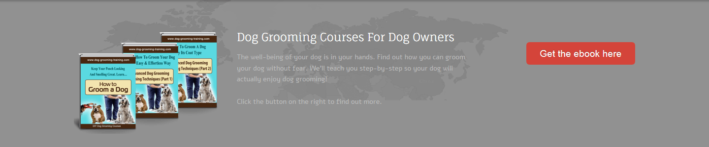 Dog Grooming Training eBook