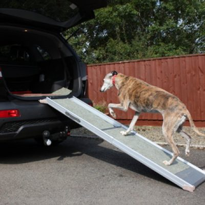 Dog Ramps/Stairs